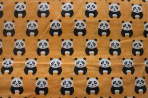 bawełna w pandy
